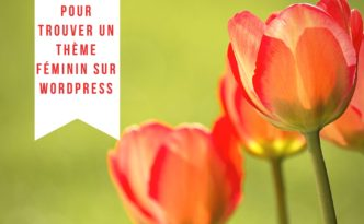 8-sites-pour-trouver-un-theme-feminin-wordpress